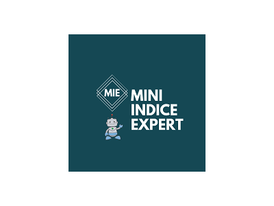 在MetaTrader市场购买MetaTrader 5的'Mini Indice Expert Bovespa b3' 自动交易程序(EA交易)